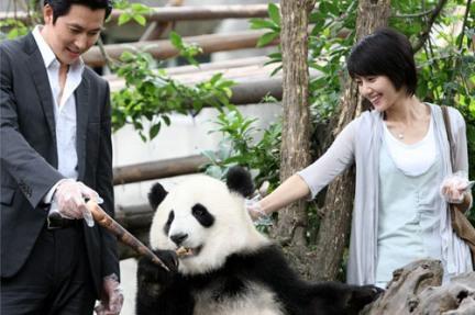 Resultado de imagem para a good rain knows panda